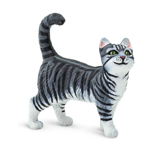 Серая полосатая кошка