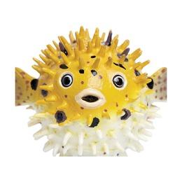 Рыба фугу, XL