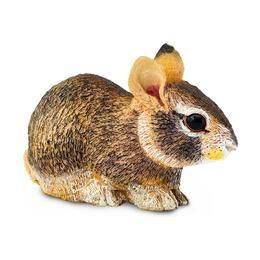 Американский кролик, детеныш, XL