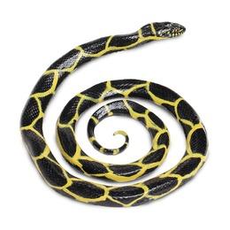 Обыкновенная королевская змея, XL