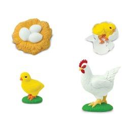 Набор Жизненный цикл курицы
