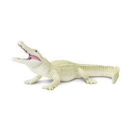 Американский аллигатор-альбинос
