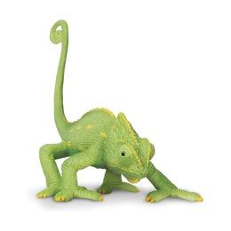 Йеменский хамелеон, детеныш XL