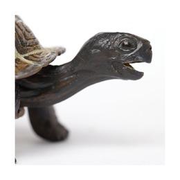 Сухопутная черепаха,детеныш XL