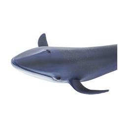 Синий кит XL