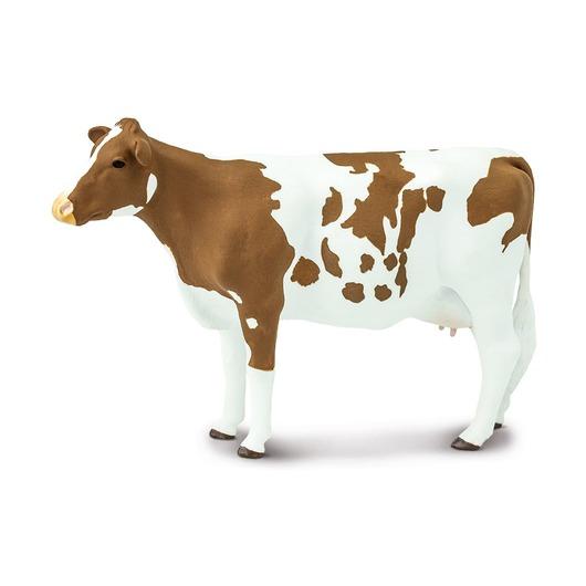 Корова Айрширской породы
