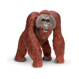 Калимантанский орангутан XL
