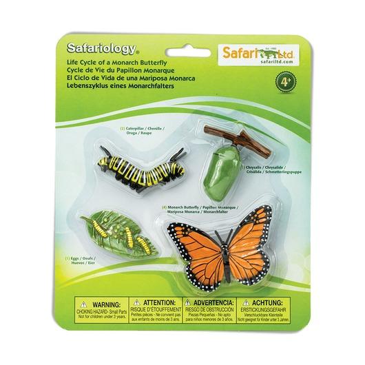 Набор Жизненный цикл бабочки монарх