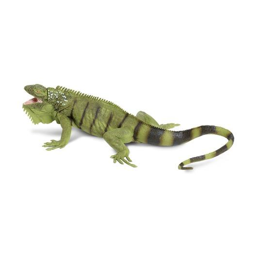 Зеленая игуана XL