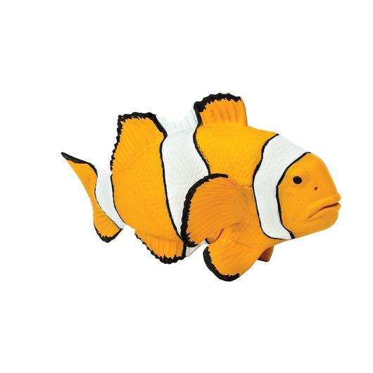 Рыба Амфиприон-клоун, XL