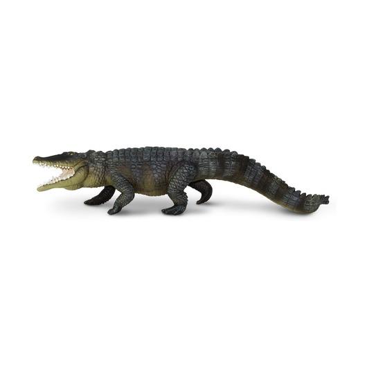 Гребнистый крокодил, XL