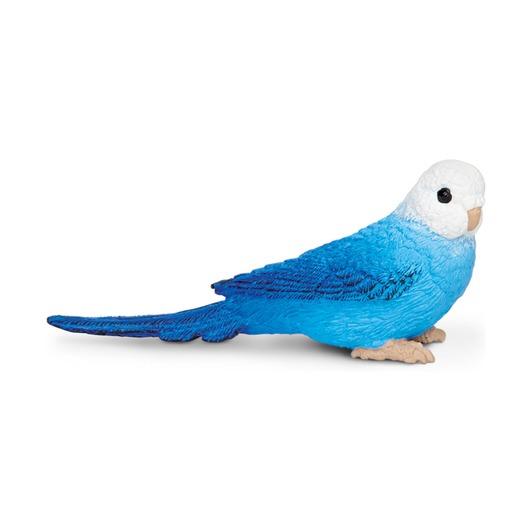 Синий волнистый попугайчик