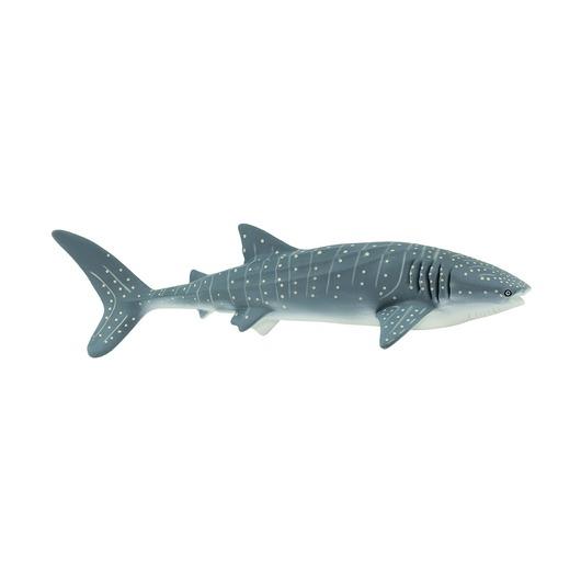 Китовая акула, XL