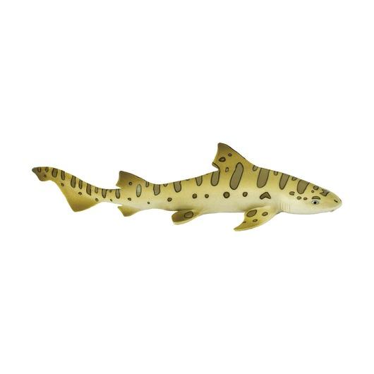 Леопардовая акула