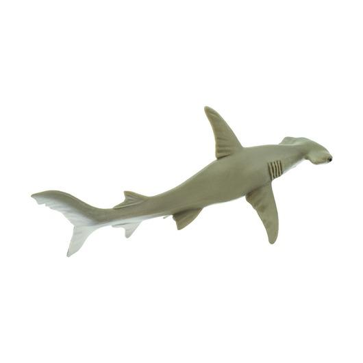 Акула-молот