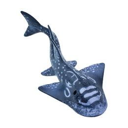 Акулий скат