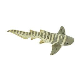 Акула-зебра