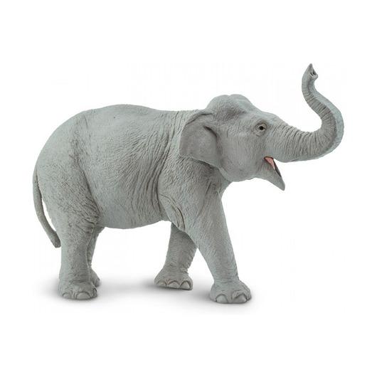 Индийский слон, XL