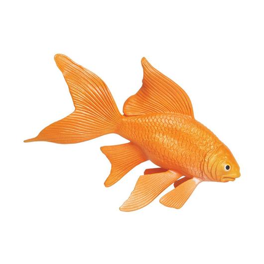 Золотая рыбка, XL