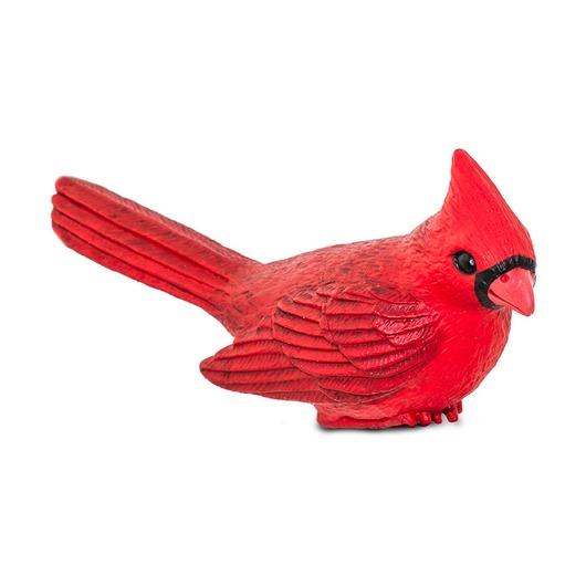 Красный кардинал, XL
