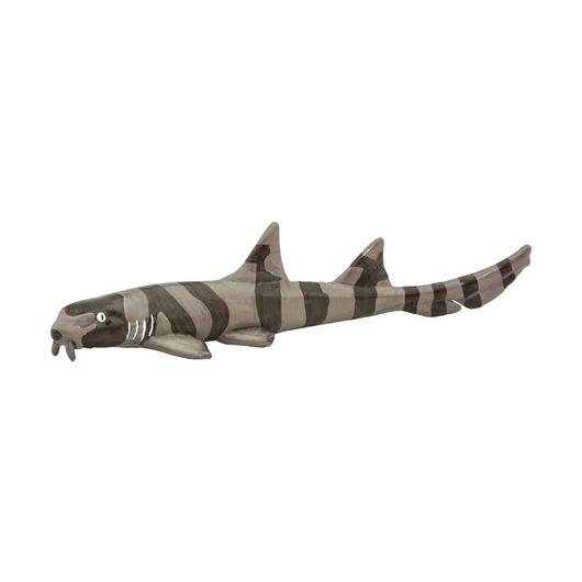 Азиатская кошачья акула
