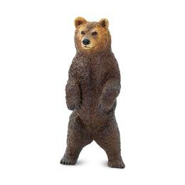 Медведь гризли, стоит
