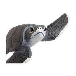 Морская черепаха, детеныш