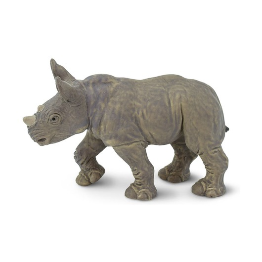 Белый носорог, детеныш