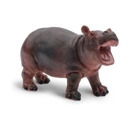 Обыкновенный бегемот, детеныш