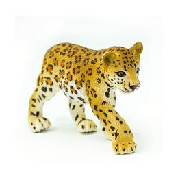 Леопард, детеныш