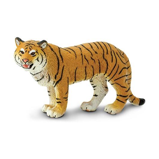Бенгальский тигр, самка