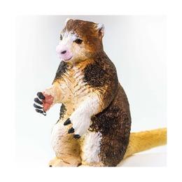 Древесный кенгуру Матчи