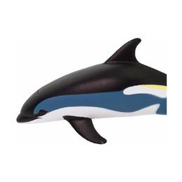 Атлантический белобокий дельфин