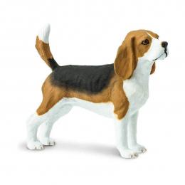 Собака Бигль